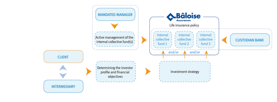 internal-collective-funds-framework-en